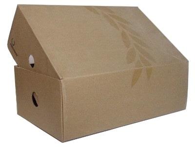 thùng carton nắp chồm
