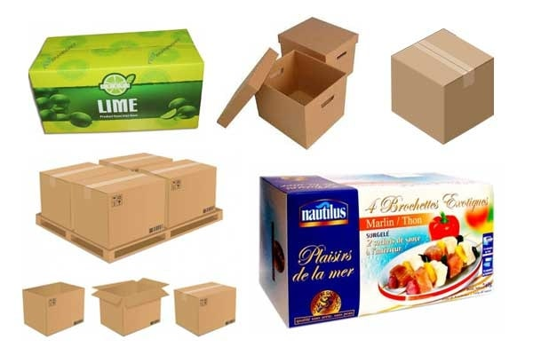 công năng sử dụng thùng carton