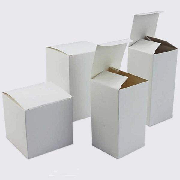mẫu hộp giấy carton đơn giản