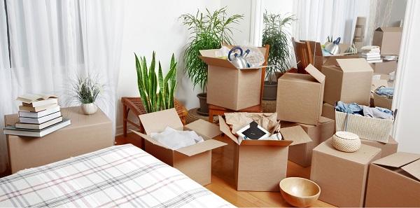 mua thùng carton chuyển nhà tphcm