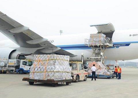 thùng carton sử dụng để đi máy bay